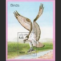 Афганистан. Хищные птицы