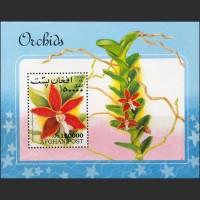 Афганистан.Орхидеи