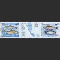 Рыбы Чудского и Псковского озер