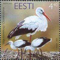 Птица года. Белый аист