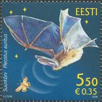 Фауна Эстонии. Летучая мышь