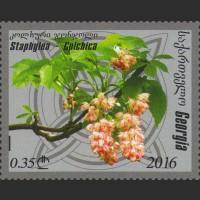 Флора Грузии