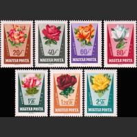 Венгрия.Флора. Розы