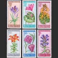 Венгрия. Охраняемые цветы