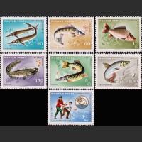 Венгрия. XIV съезд Международного союза по спортивному рыболовству