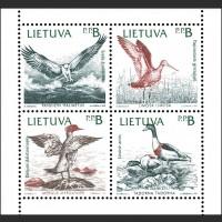 Птицы Балтийского моря