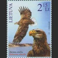 Красная книга Литвы. Орлан белохвост