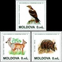 Европейский год охраны природы