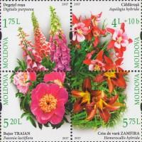 Цветы Ботанического сада в Кишиневе