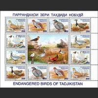 Птицы, занесенные в Красную книгу Таджикистана
