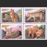 Камышовый кот. WWF
