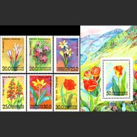 Флора Узбекистана