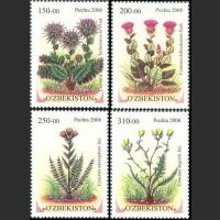 Редкие растения Узбекистана.Семейство Астровые