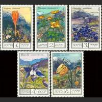 Цветы гор Кавказа