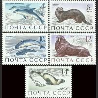 Млекопитающие - обитатели морей и океанов